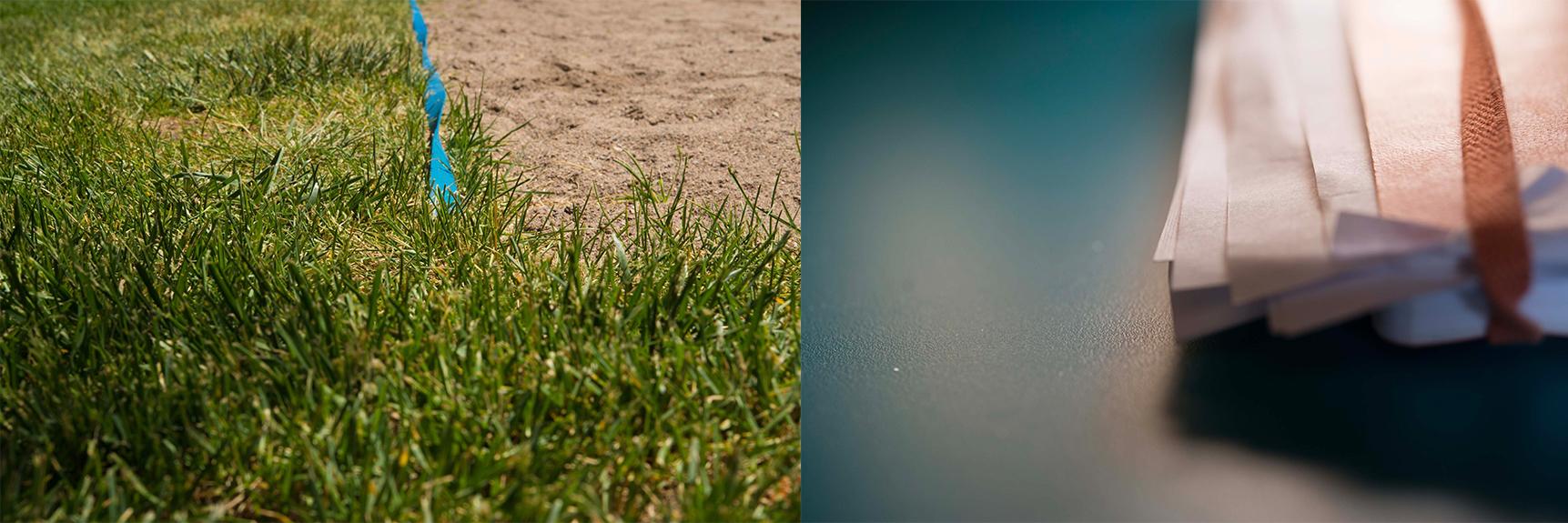 Grass-Orang Book.jpg