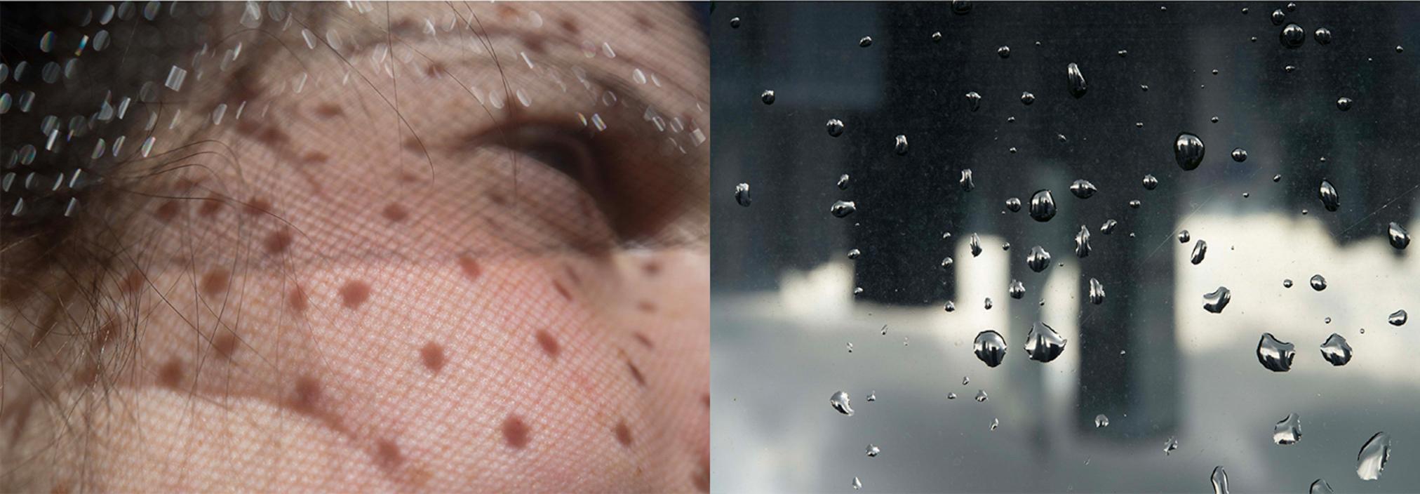 SunDrops-RainDrops.jpg