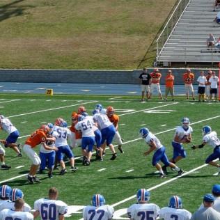 FL sportsgrass Screenshot_2.jpg