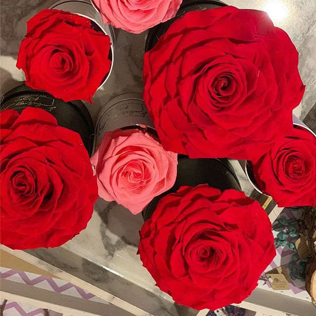Giant roses available on the website soon!🌹❤️