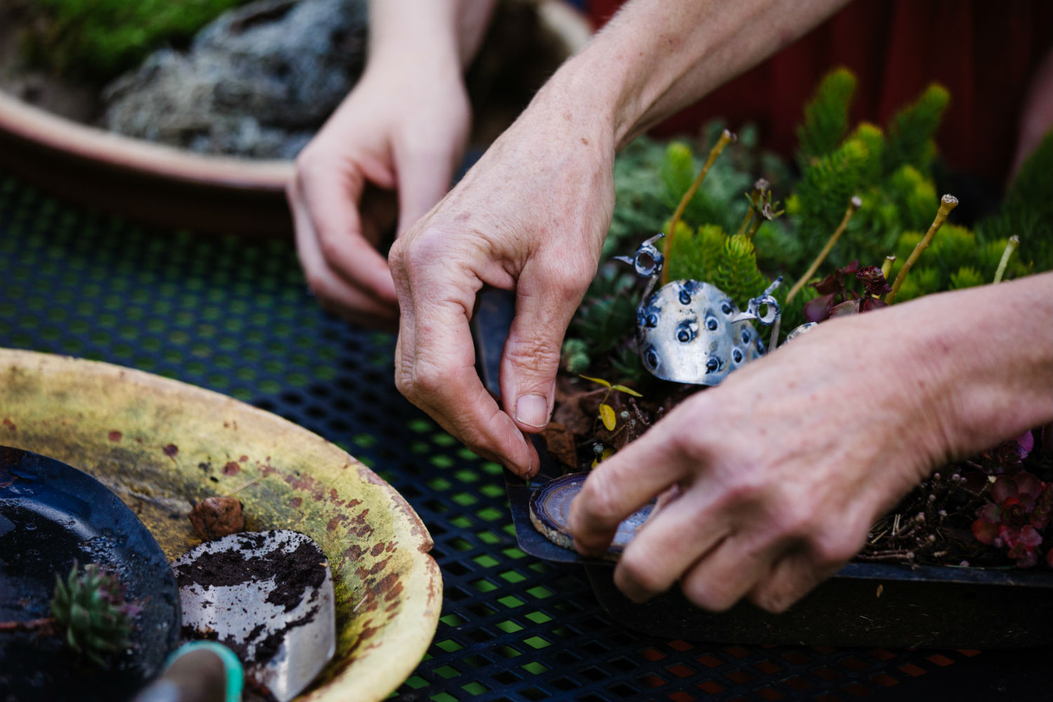 Care Partner Training connects you with your loved one through creaticve activities such as gardening