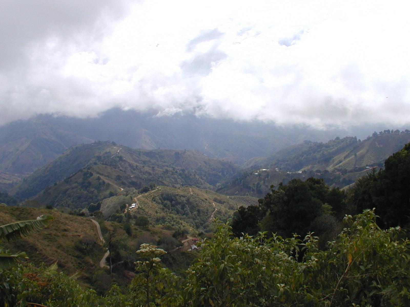 Mout View.JPG