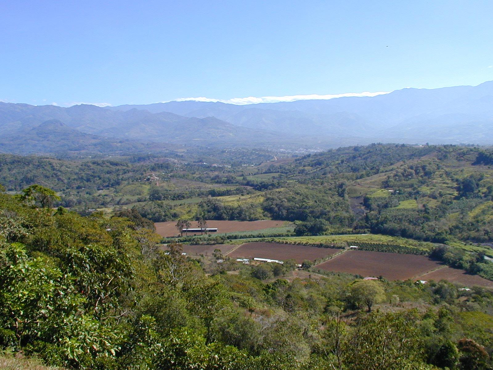 Paseo View2.JPG