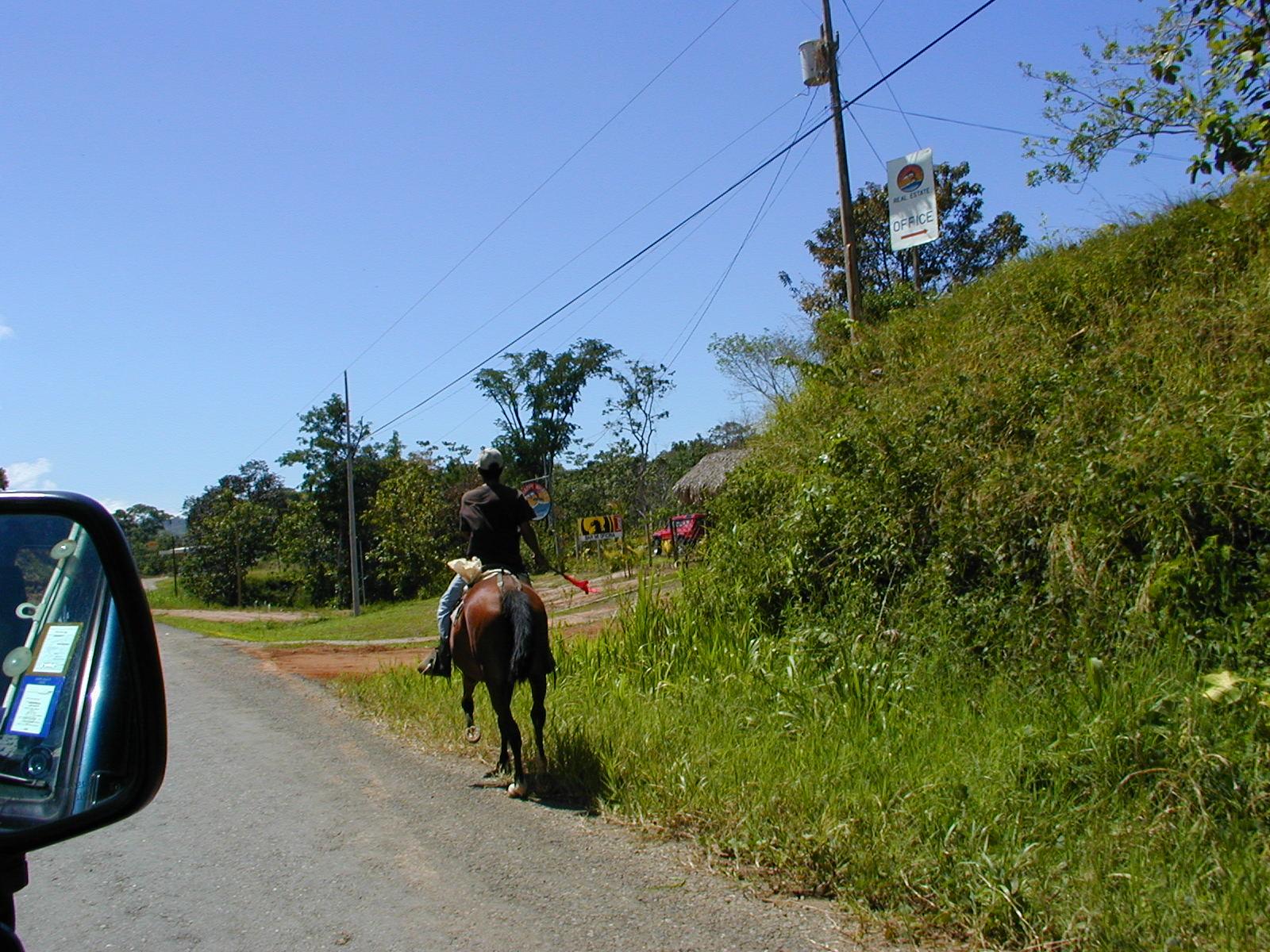 Road Horse2.JPG
