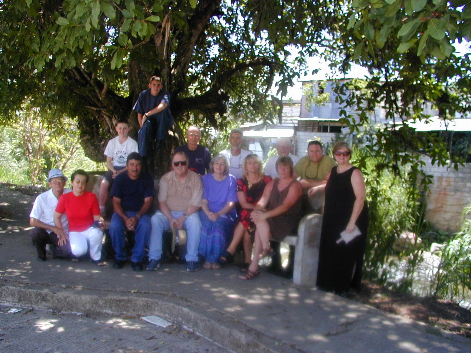 Team Tree2.JPG
