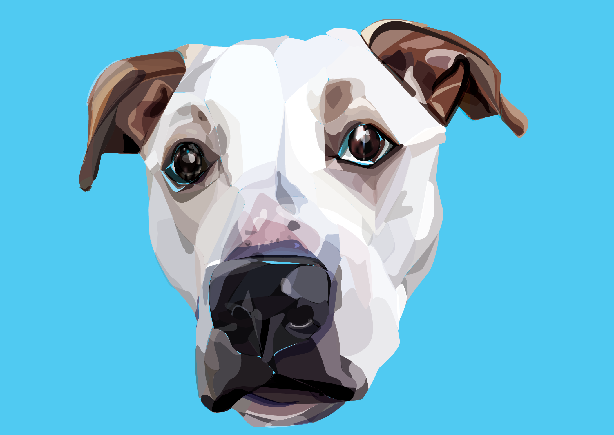 Otis  Adobe Illustrator/ Photoshop