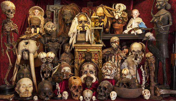 Copy of THE VIKTOR WYND MUSEUM OF CURIOSITIES, FINE ART AND NATURAL HISTORY