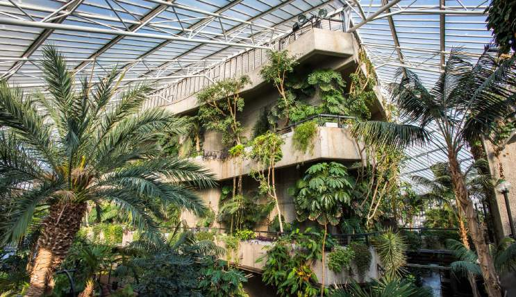 Copy of BARBICAN CONSERVATORY