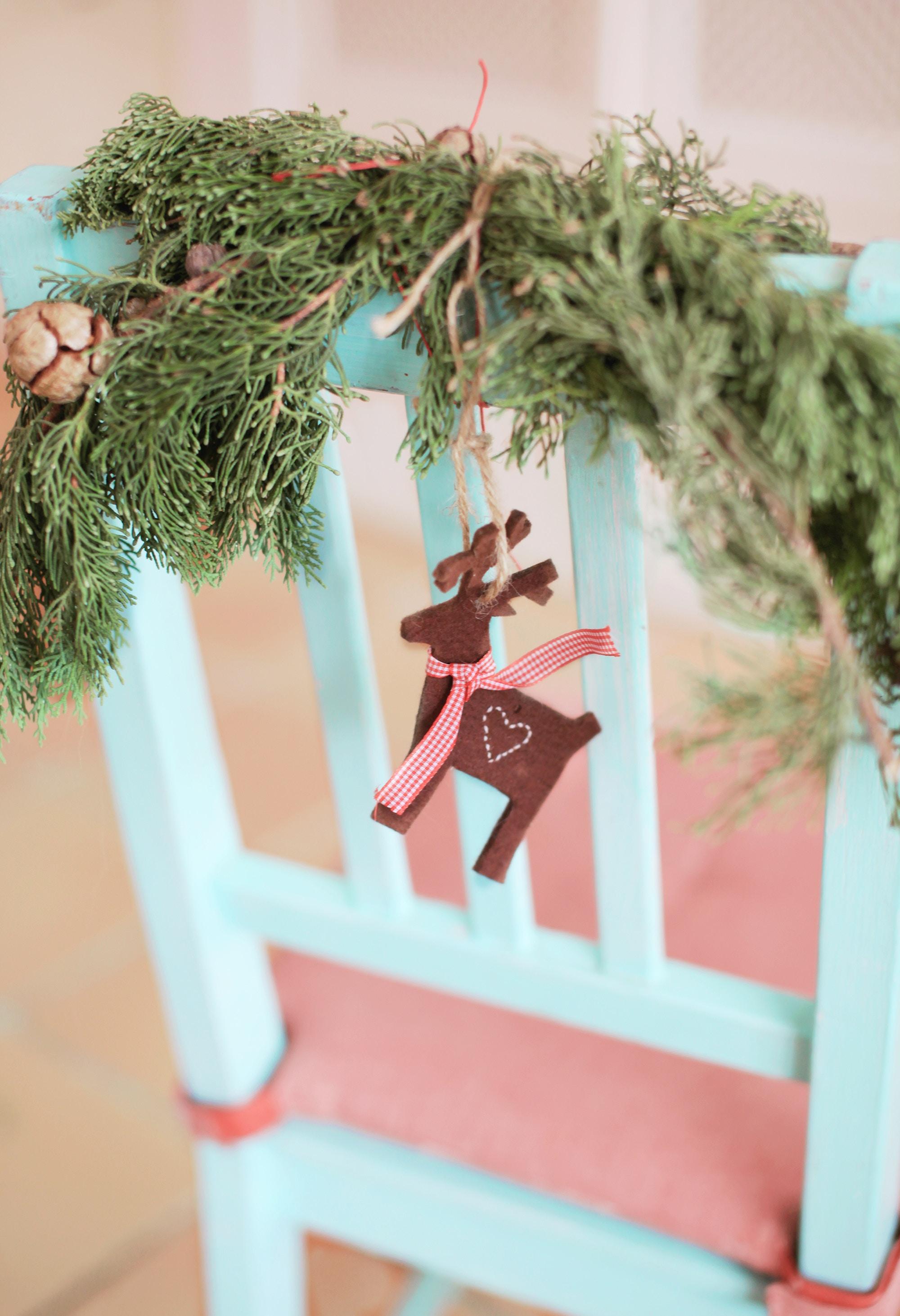 elena-ferrer-167494-unsplash holiday reindeer.jpg