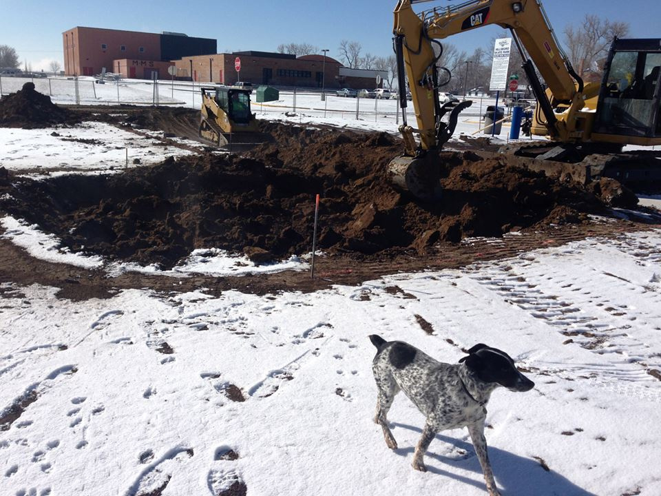 Bowl excavation