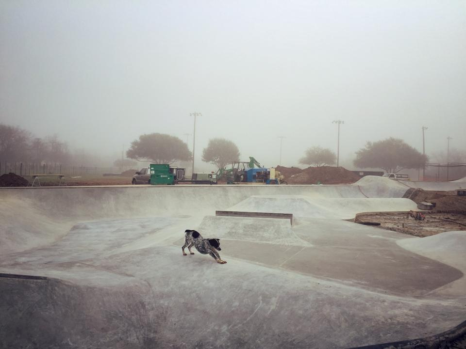 Downward dog at the Fredericksburg, Texas Skatepark