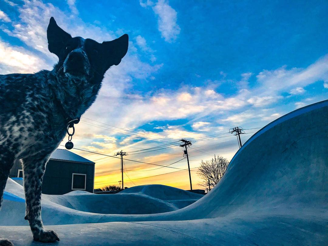Noot's ready for the Taylor, Texas skatepark to open already.