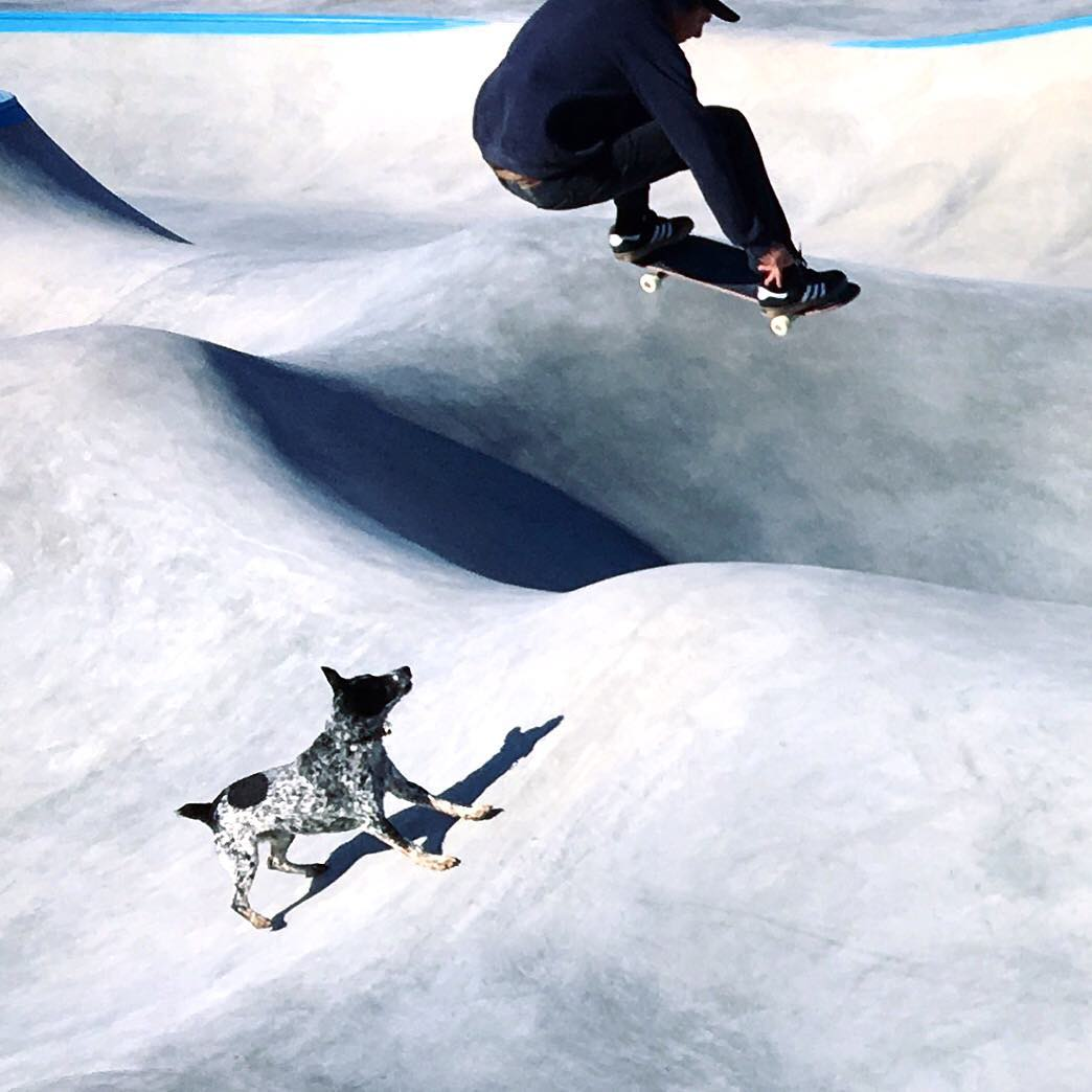 Skate on the moon: Richie Conklin & Noot the Dog take some test runs