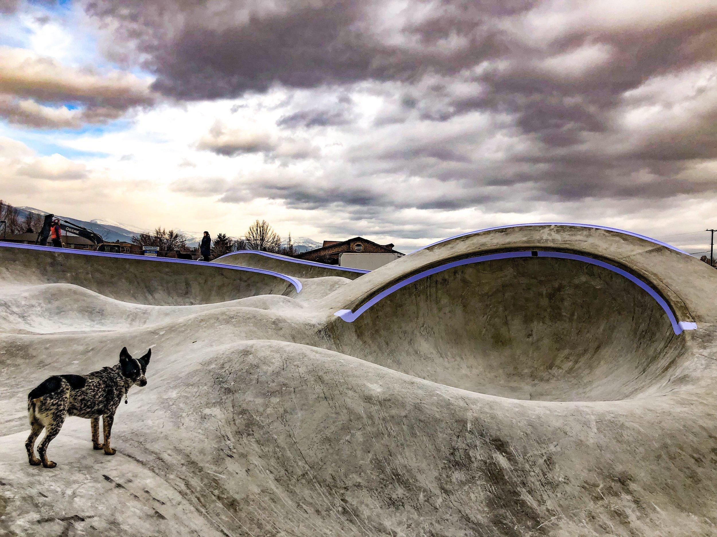 Lots o lines 💫 Hamilton, Montana