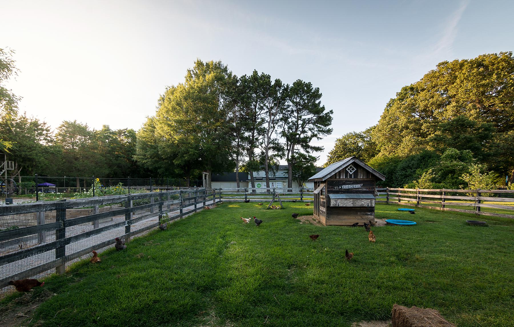 Lanier Farm-10.jpg