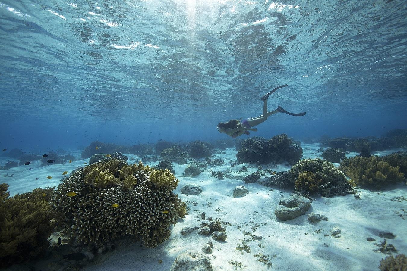 UY_Andaman Islands_03.jpg
