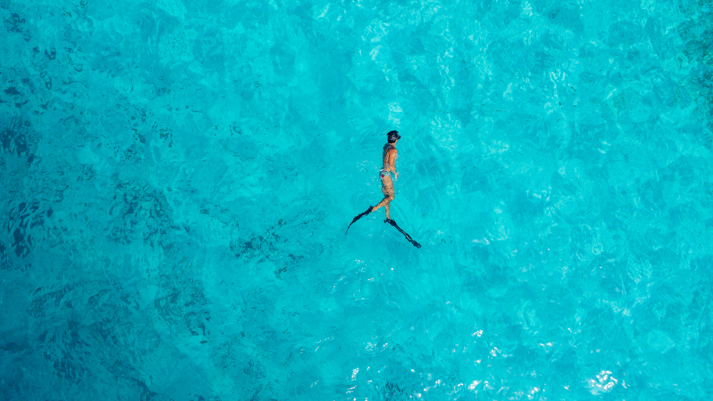 SIA - Free diving-31.jpg