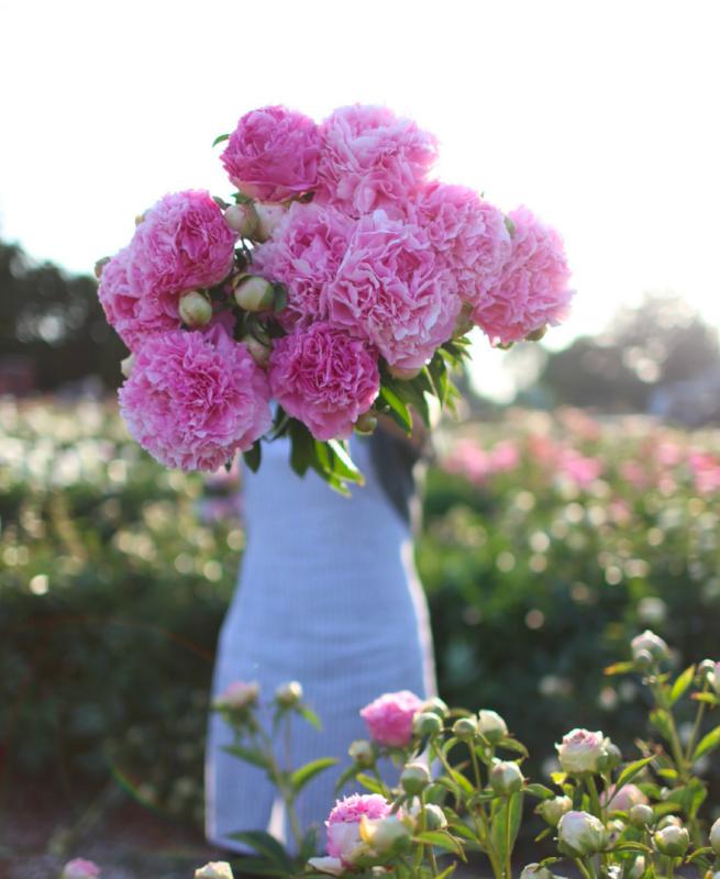 (Photo: Floret's Flowers)