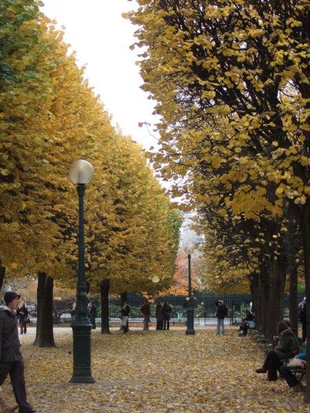 Paris in the Fall (Photo: Carrie Gress)