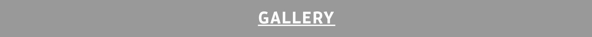 Gallery-100.jpg