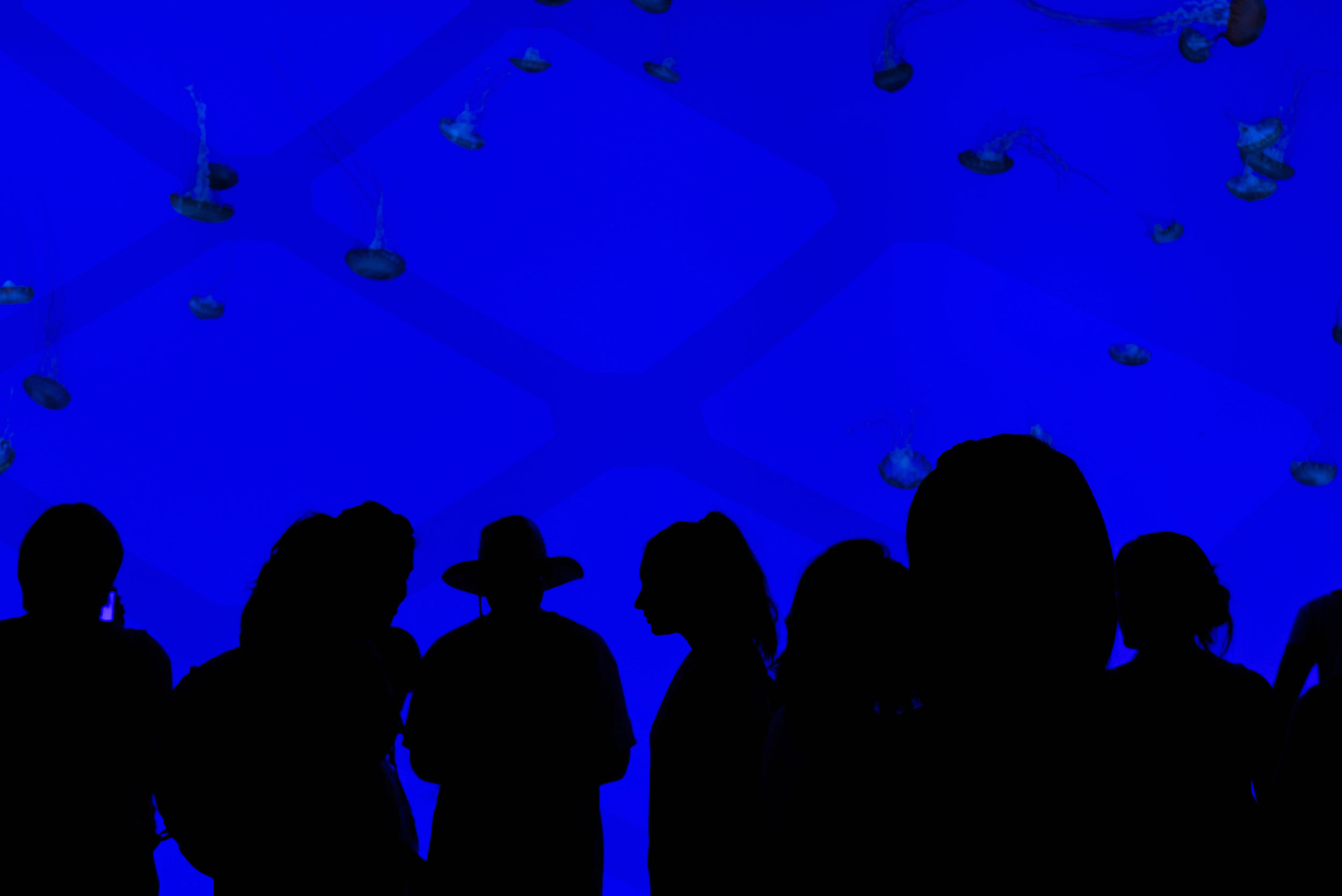 Amanti-People-09-branded.jpg