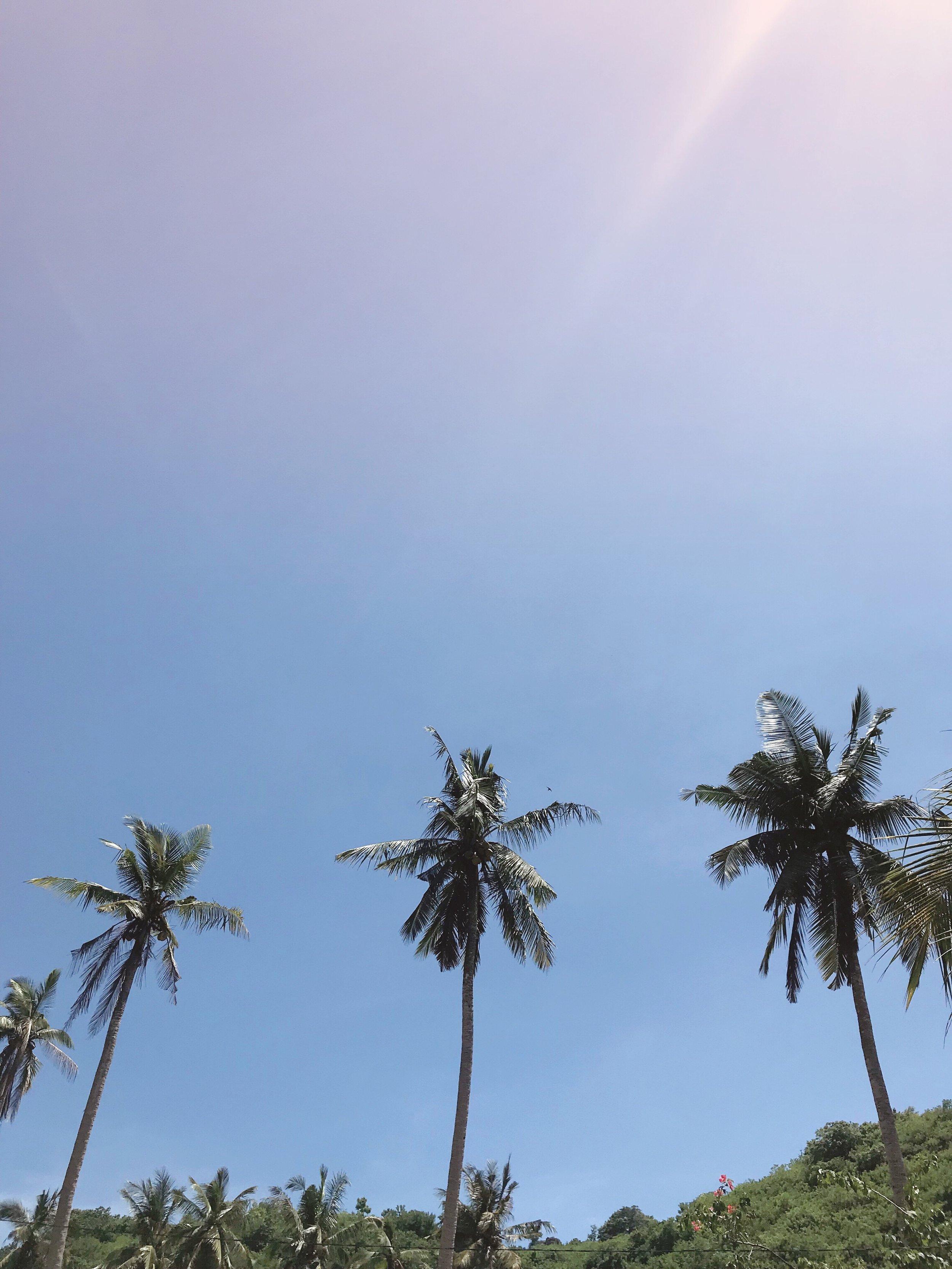 Nusa Penida Bali Things to do.JPG