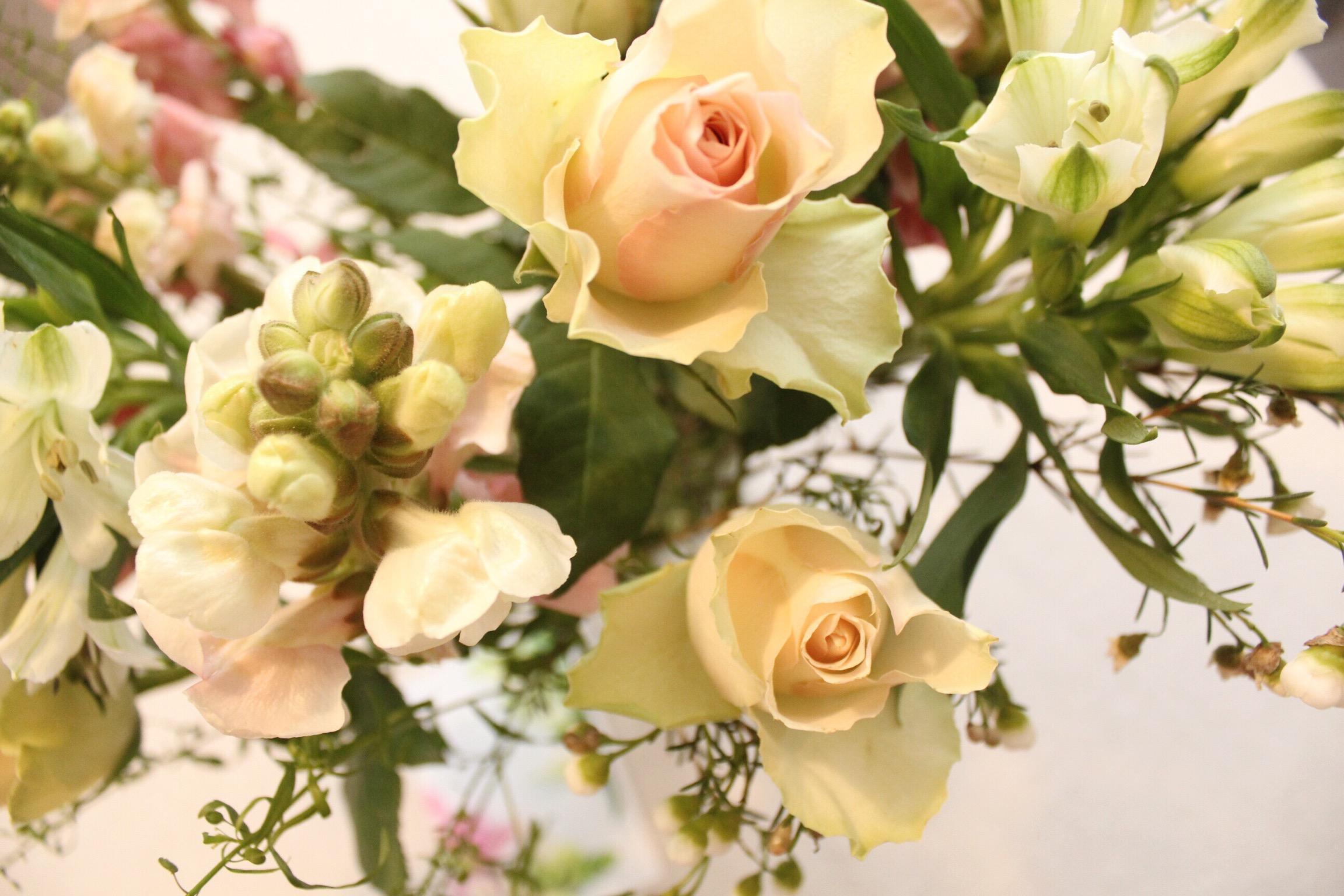 Bloom & Wild Letterbox Flowers.jpeg