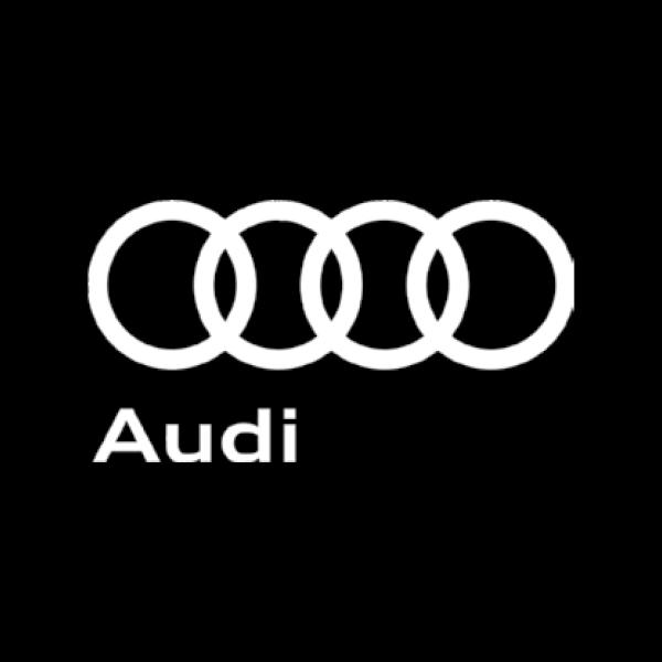 ds_sponsors_audi.png