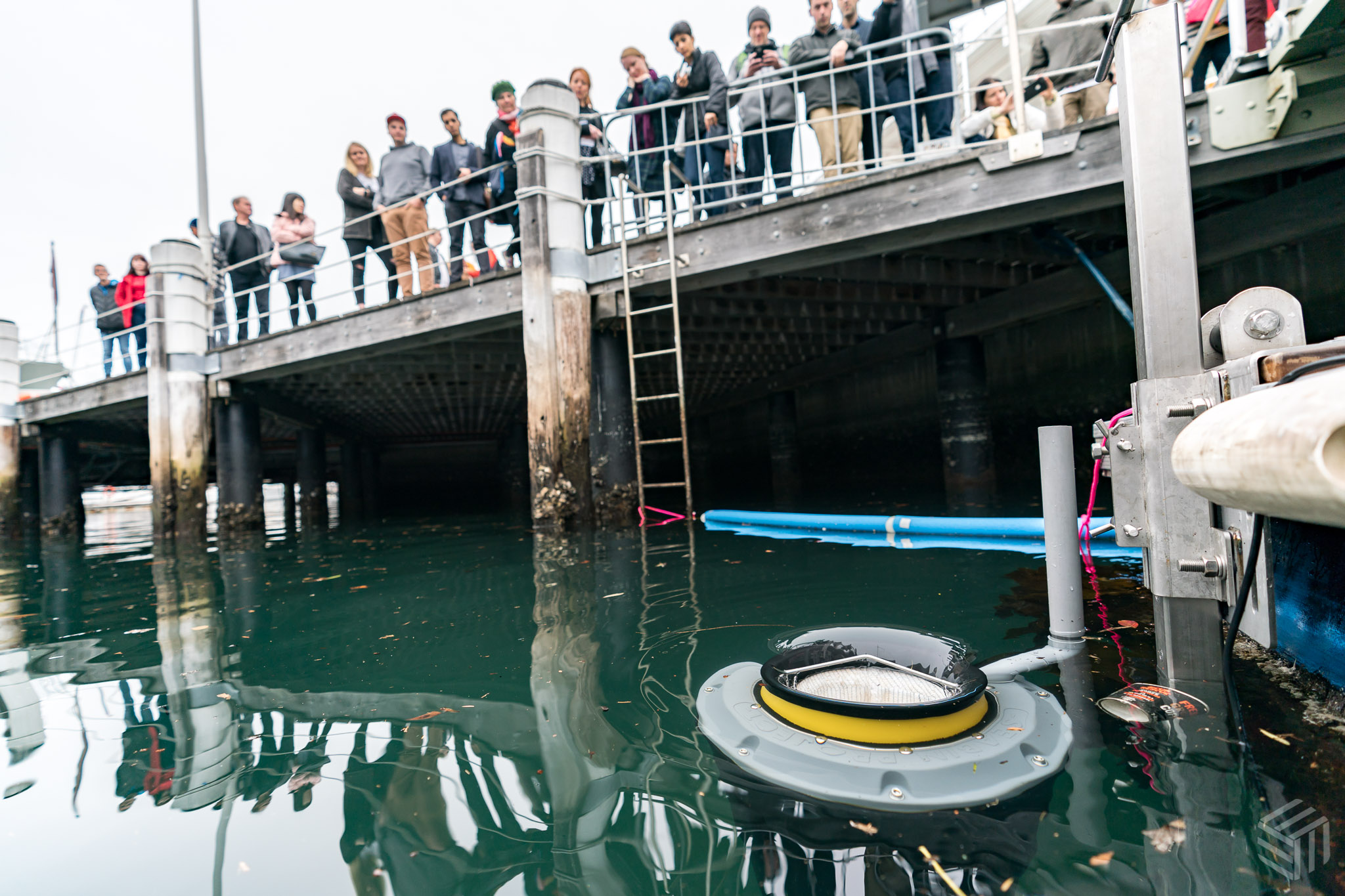 A disposable coffee cup moves towards the  Seabin . Photo by Elliot Kirkwood Photography