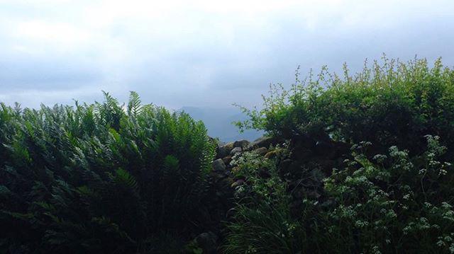A peek of the peaks. Lake District.
