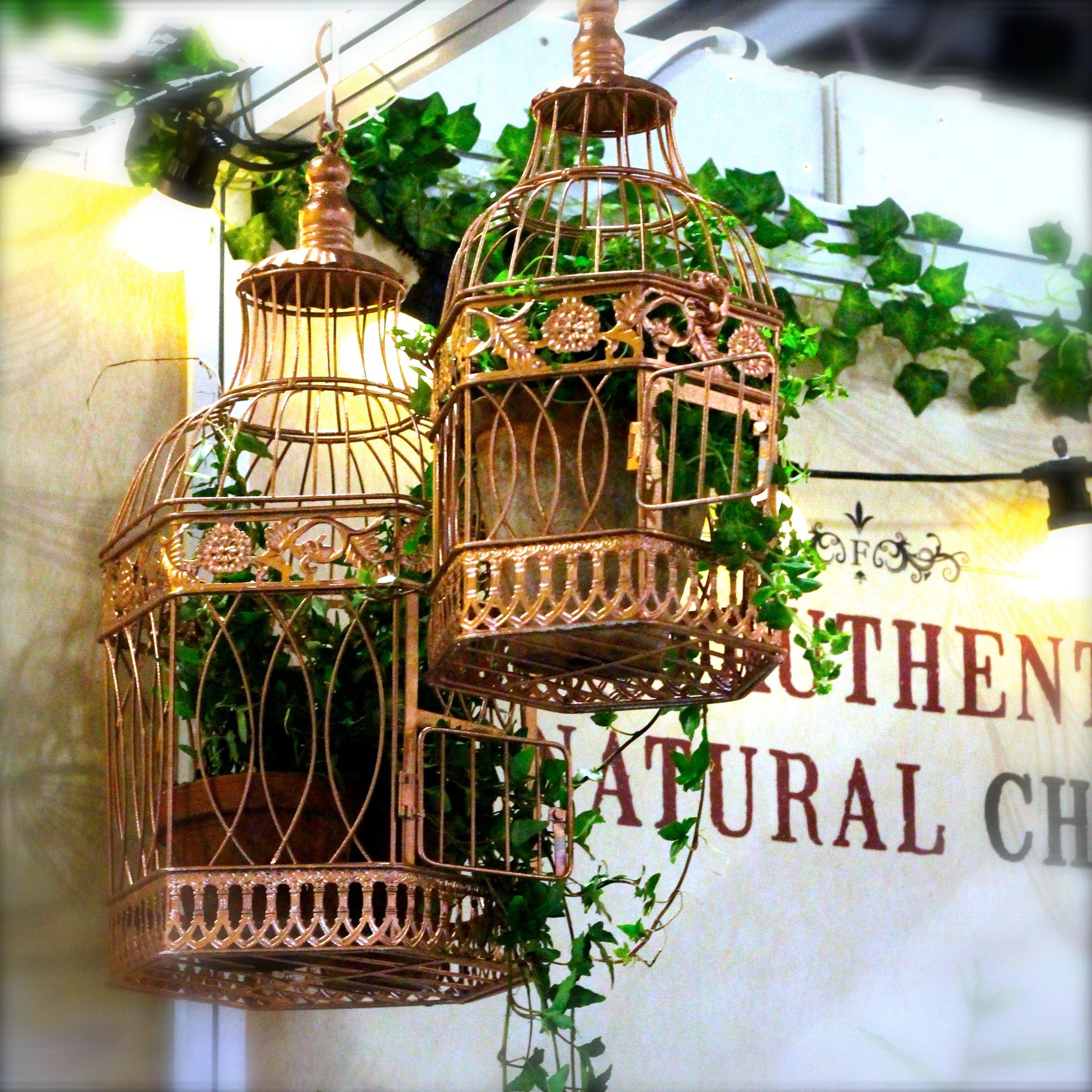 Bird cages 2.jpg