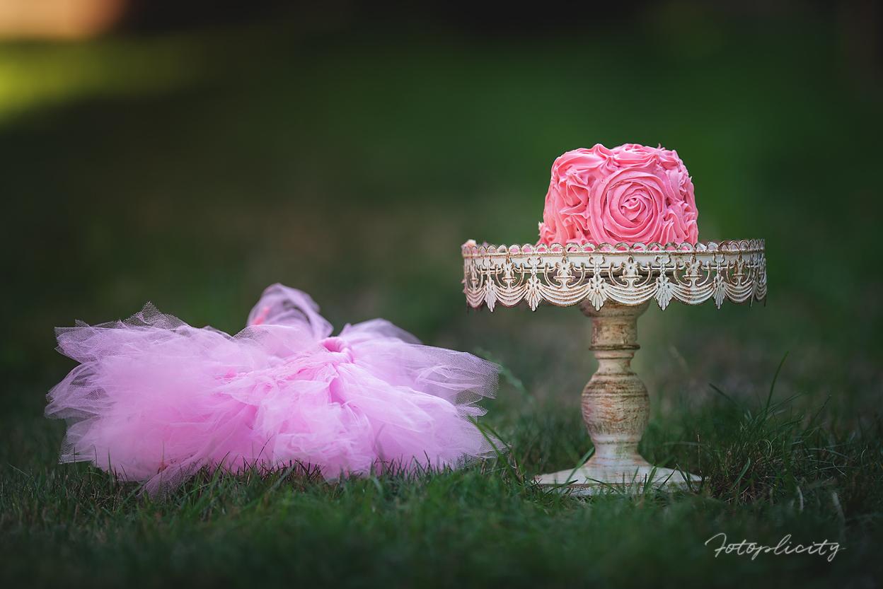 photograph of cake and tutu