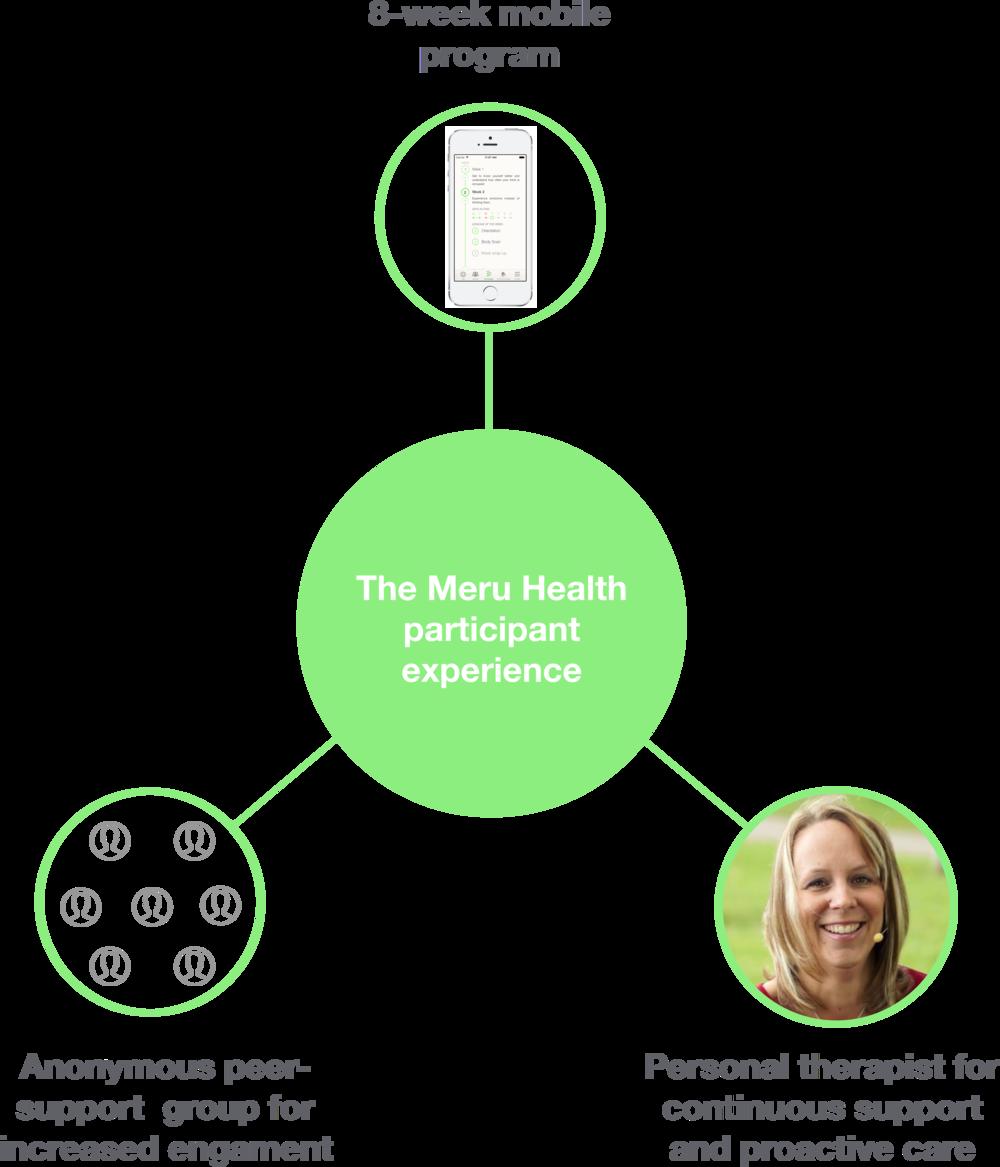online depression burnout treatment meru health.png