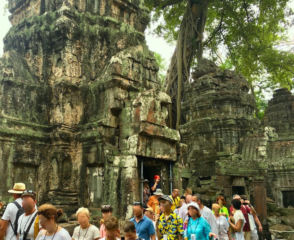 Excursão no templo de Ta Prohm (Tomb Raider). Foto: Patti Neves