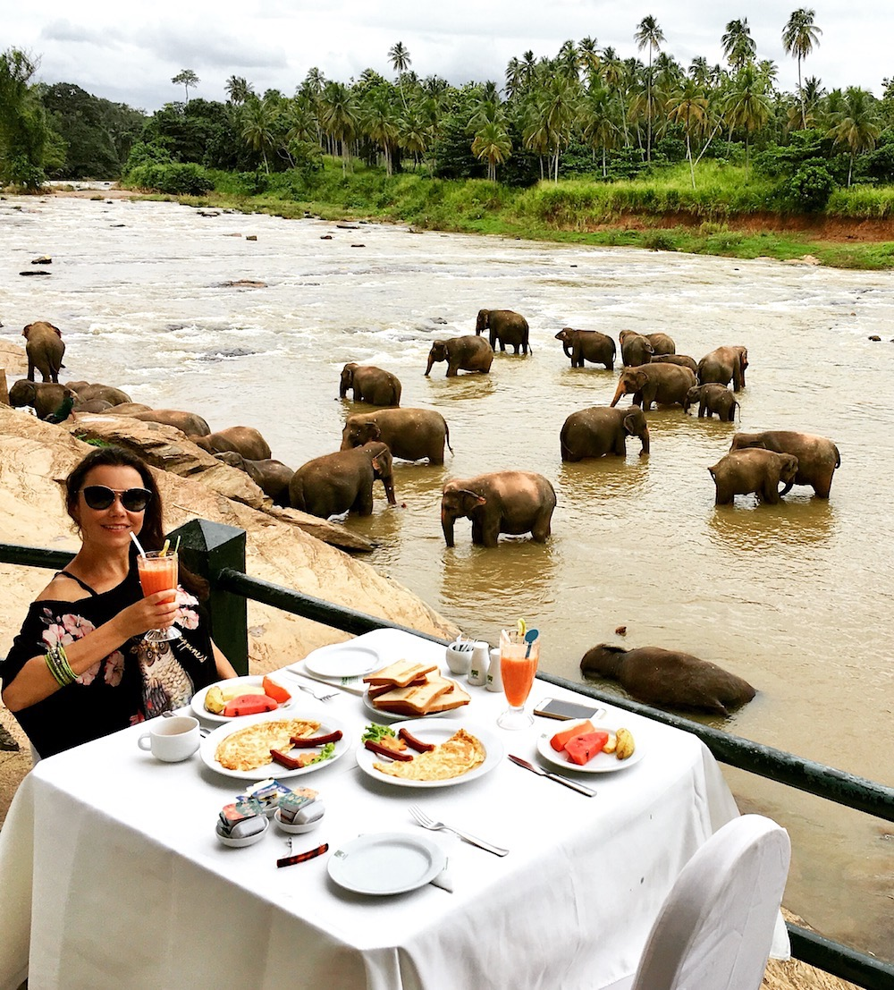 Breakfast with elephants in Sri Lanka. Photo: David Mattatia