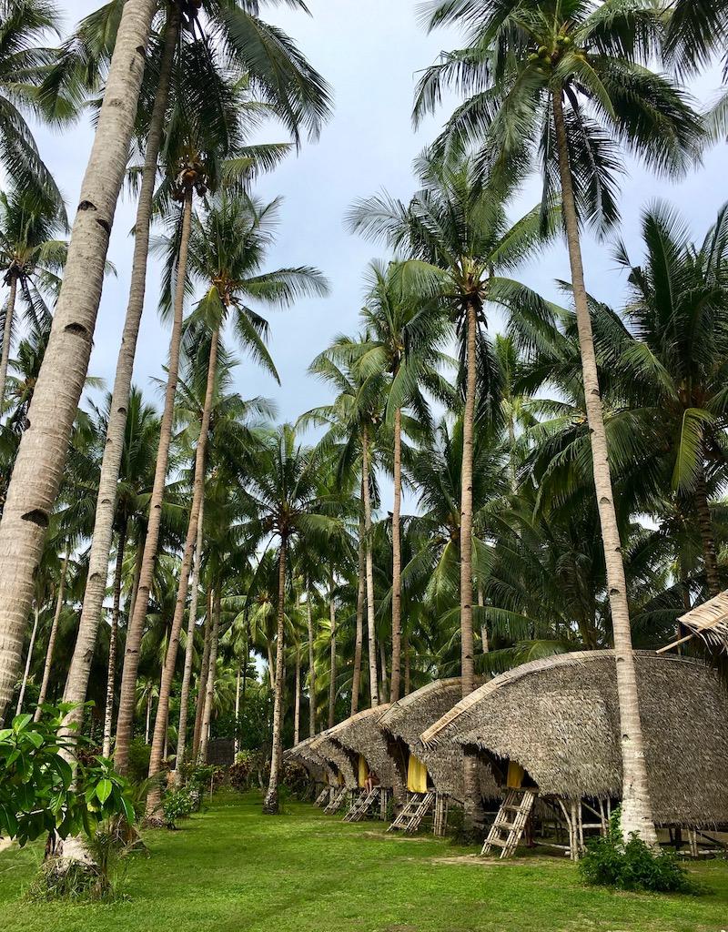 Tao Farm, ilhas remotas de Palawan, Filipinas. Fotos: Patti Neves