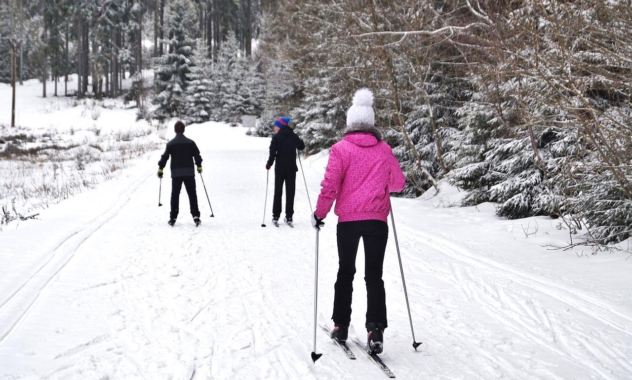 Ski de fond (cross-country ski), modalidade urbana. Foto: Pixabay