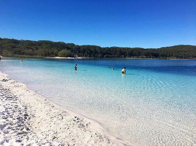Acreditem se quiser, este é um lago!  Paraíso de água doce em Fraser Island, Australia 💦 . .  #australia #lakemackenzie #fraserisland #queensland #elicreek #hiketheglobe #exploringtheglobebucketlist #freshwaterparadises  #mochileirosgrupofechado #traveldeep #paradise #amazingdestinations #beautifuldestinations #amazingplaces #missãovt #revistaviajar #revistaqualviagem #viagemtop #viajarepreciso #viajarfazbem