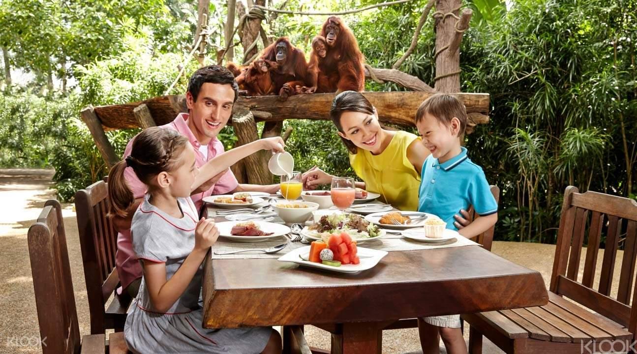 Singapore Zoo - Há 3 modalidades de tickets (clique nos links abaixo):Entrada SimplesCafé da Manhã na SelvaSafári Noturno