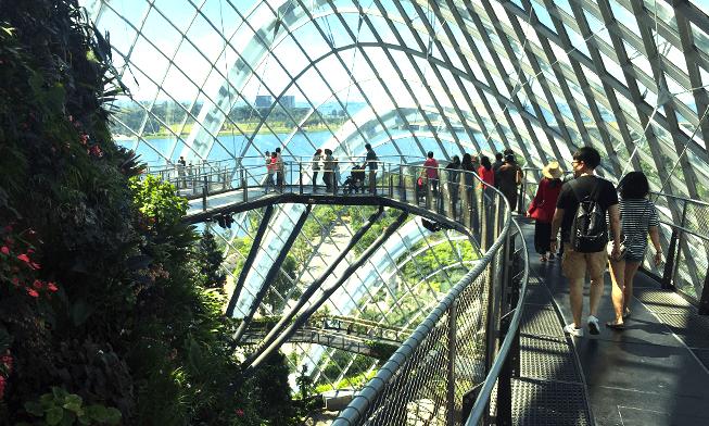 Gardens by the Bay - Há várias modalidades de tickets. Clique nas opções abaixo:Ingressos para os 2 domos + passarela OCBC (skyway entre as árvores)Ingresso somente para os 2 domos