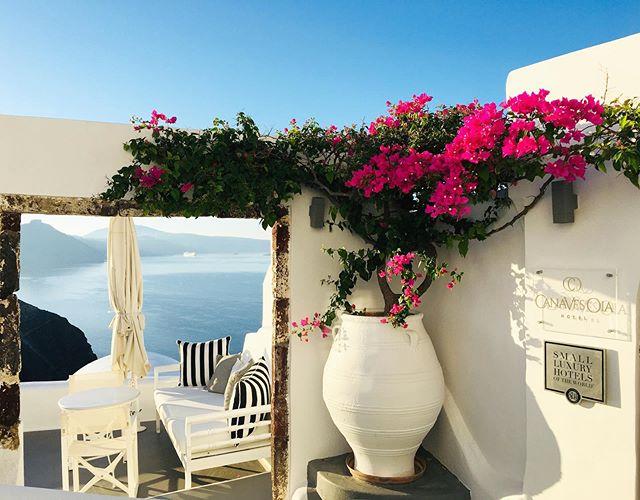 Pensa num sonho. Um paraíso dentro do paraíso ✨ . Não queremos mais ir embora! Como faz? 🥺 . . #oiasantorini #oia #oiacanaves #oiacanaveshotel #santorini #grecia #greece #greek #imerovigli #imeroviglisantorini #grèce #greece🇬🇷 #oia #mediterranean #missãovt #revistaviajar #revistaqualviagem #viagemtop #viajarepreciso #viajarfazbem #amazingplaces #aroundtheworld  #morarfora #morarforadobrasil #realidades #sourbbv #blogdeviagem #brasileirasnoexterior