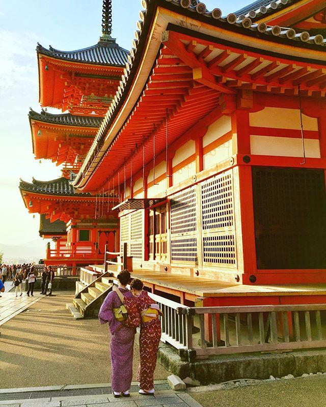 Sunset in Kyoto 🇯🇵 . . . #kyoto #japan #kyotojapan #kyototemples #kyotogram #buddhism #buddhisttemple #japão #japanesestyle #japan #art #revistaqualviagem #viagemtop #viajarepreciso #viajarfazbem #amazingplaces #aroundtheworld #morarfora #morarforadobrasil #crazyrealities #sourbbv #blogdeviagem #brasileirasnoexterior