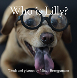 Who is Lilly cover-small.jpg