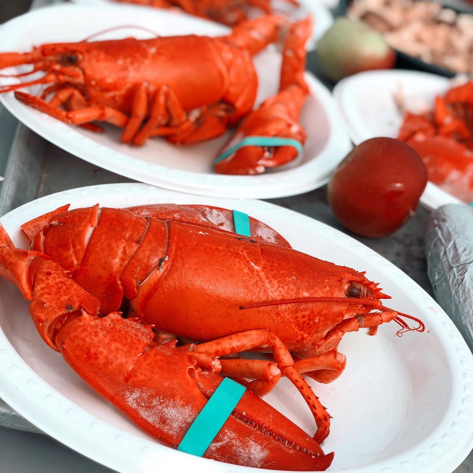 Lobster_Abbotts.jpg