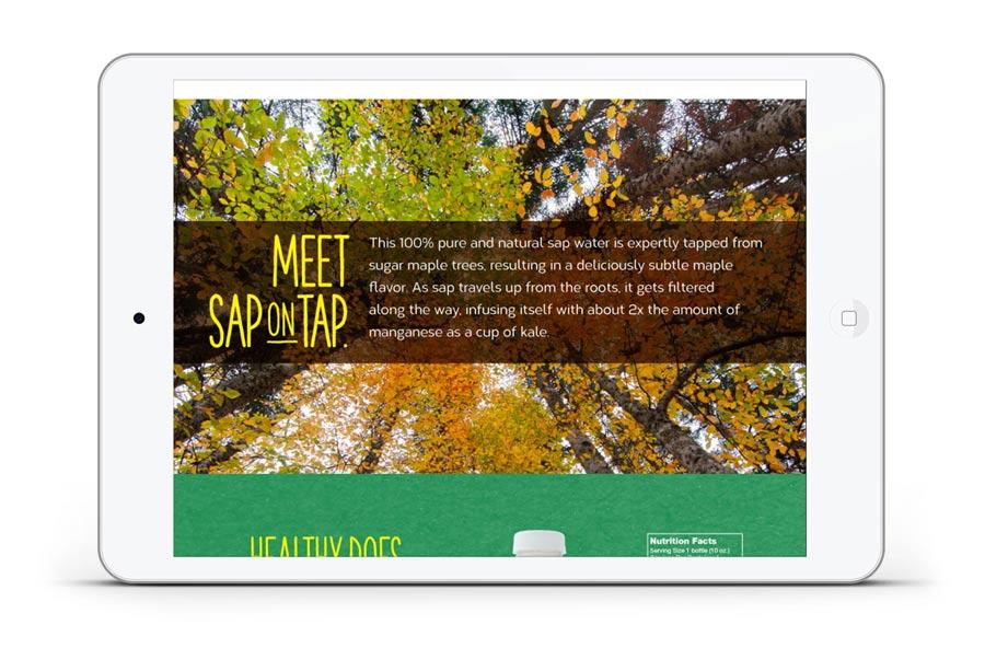 web_sap_on_tap_water_tree.jpg