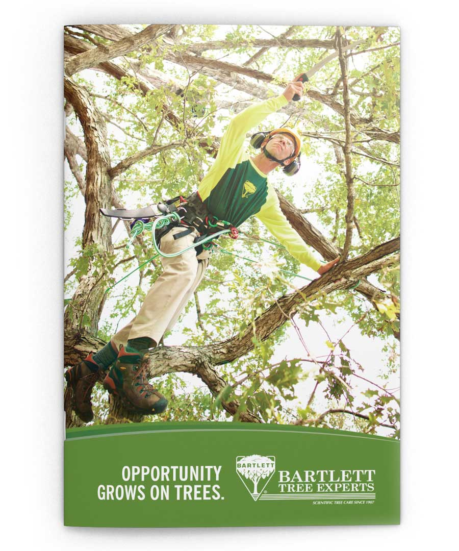 recruitment_bartlett_brochure_cover_web.jpg