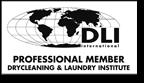 logo-DLI.png