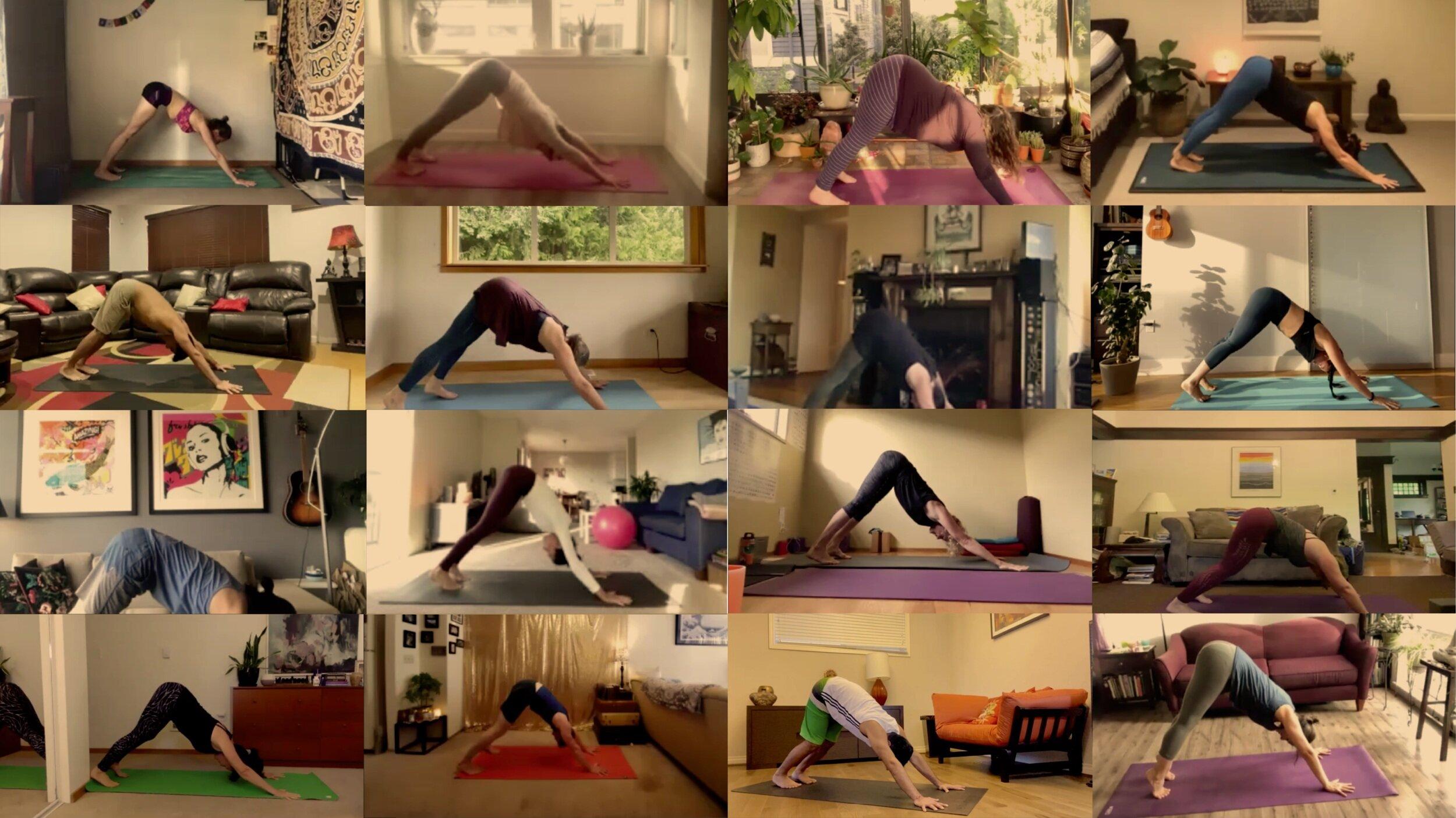 Be Luminous Yoga Online Live Yoga Classes