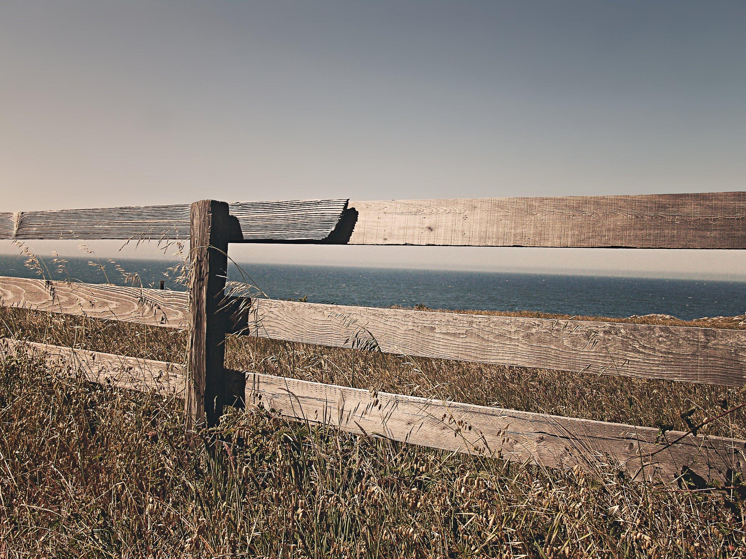 border-fence-meadow-251.jpg