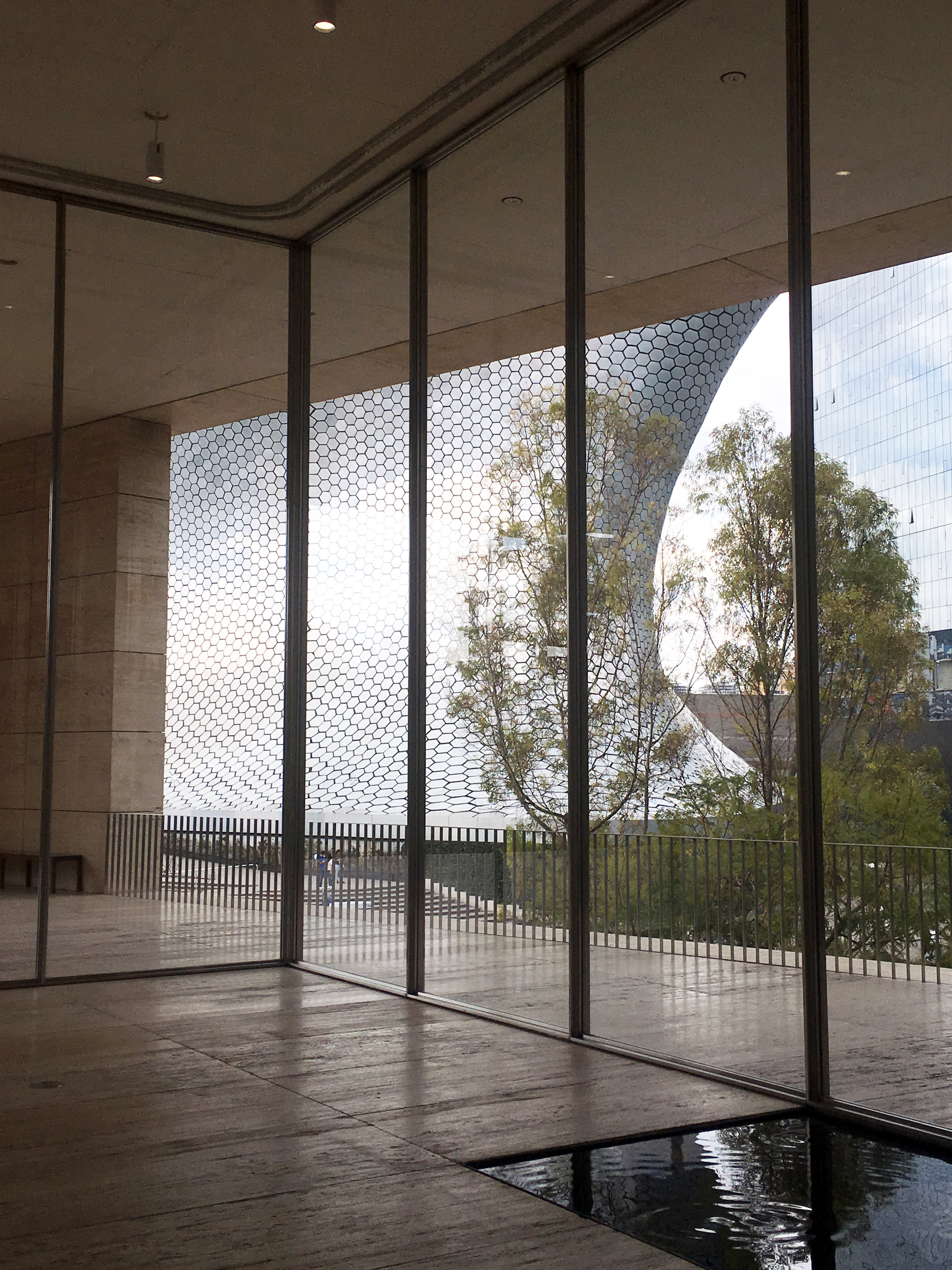 View of the Museo Soumaya from inside Museo Jumex.